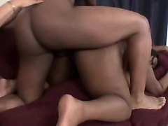 two curvy ebony ladies seduce a black bull to pound their fiery slits